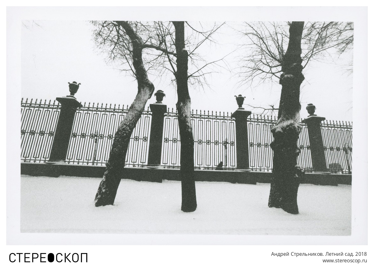 Андрей Стрельников. Летний сад. 2018